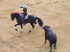 Stierkämpfe auf Mallorca